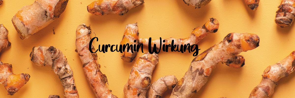 Curcumin Wirkung