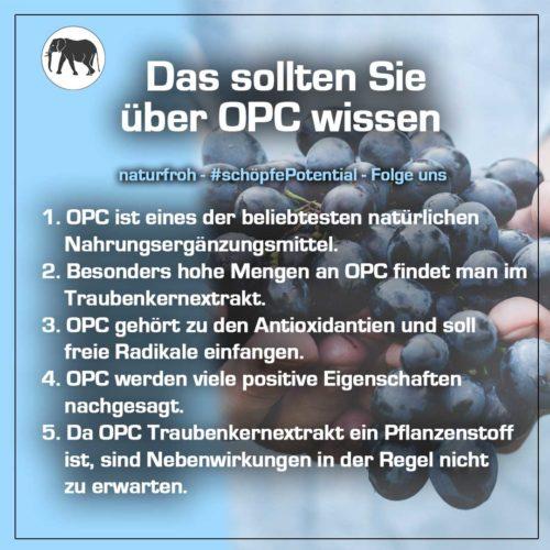 OPC Traubenkernextrakt