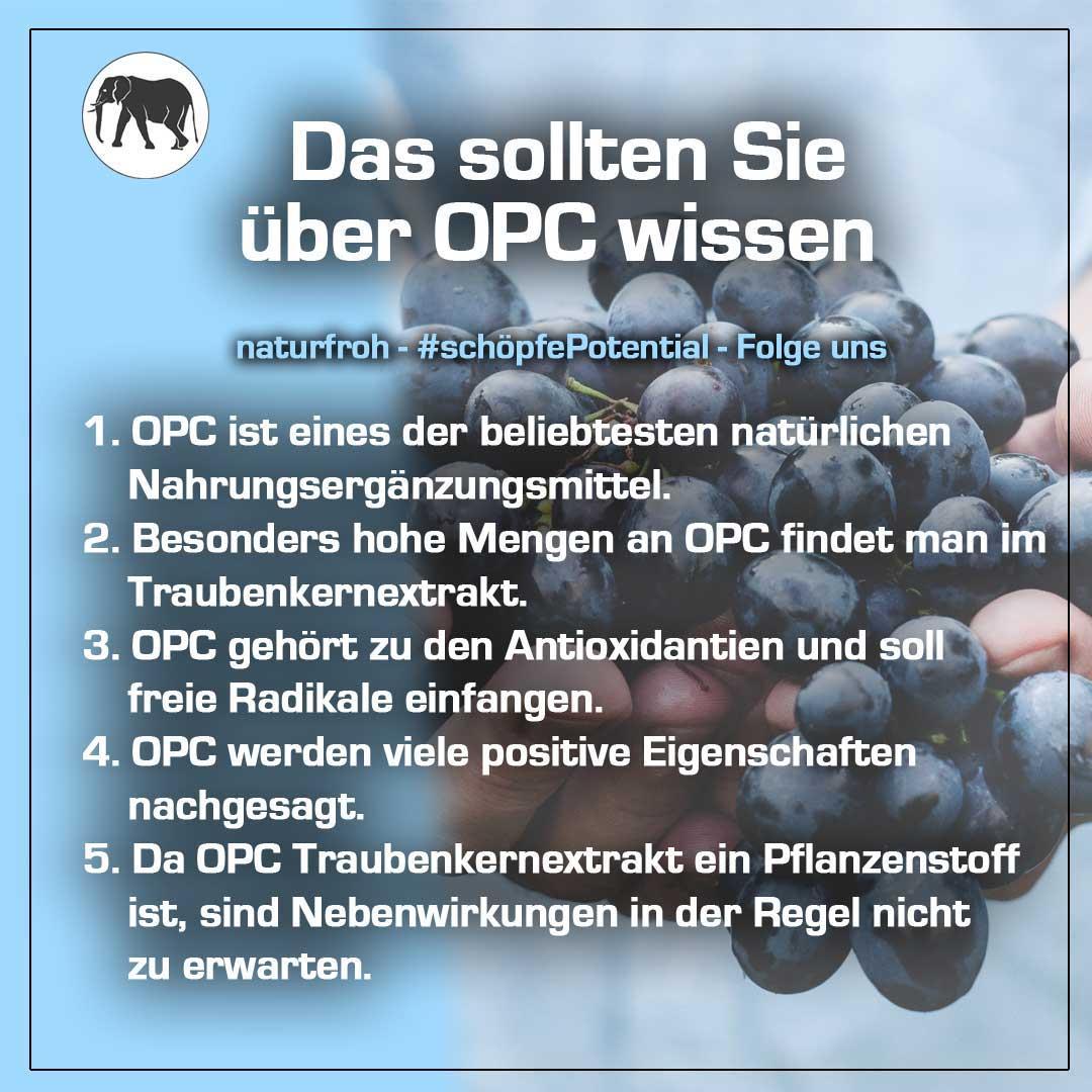 OPC mit Vitamin C