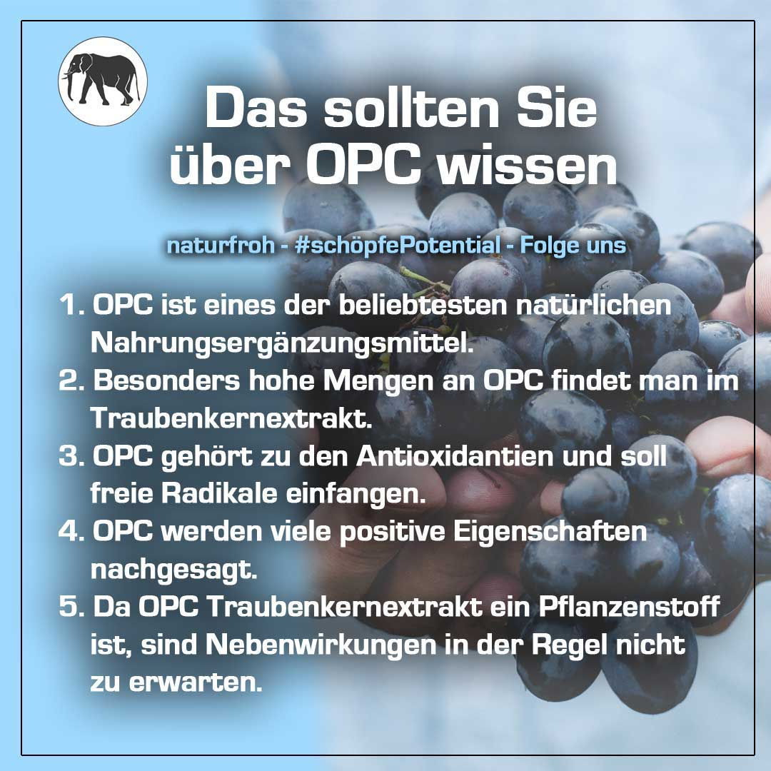 Was ist OPC