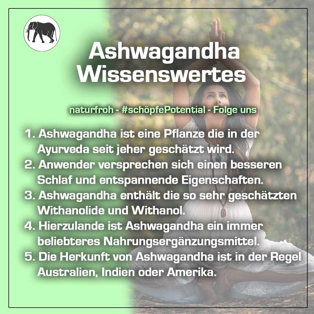 Ashwagandha Kapseln