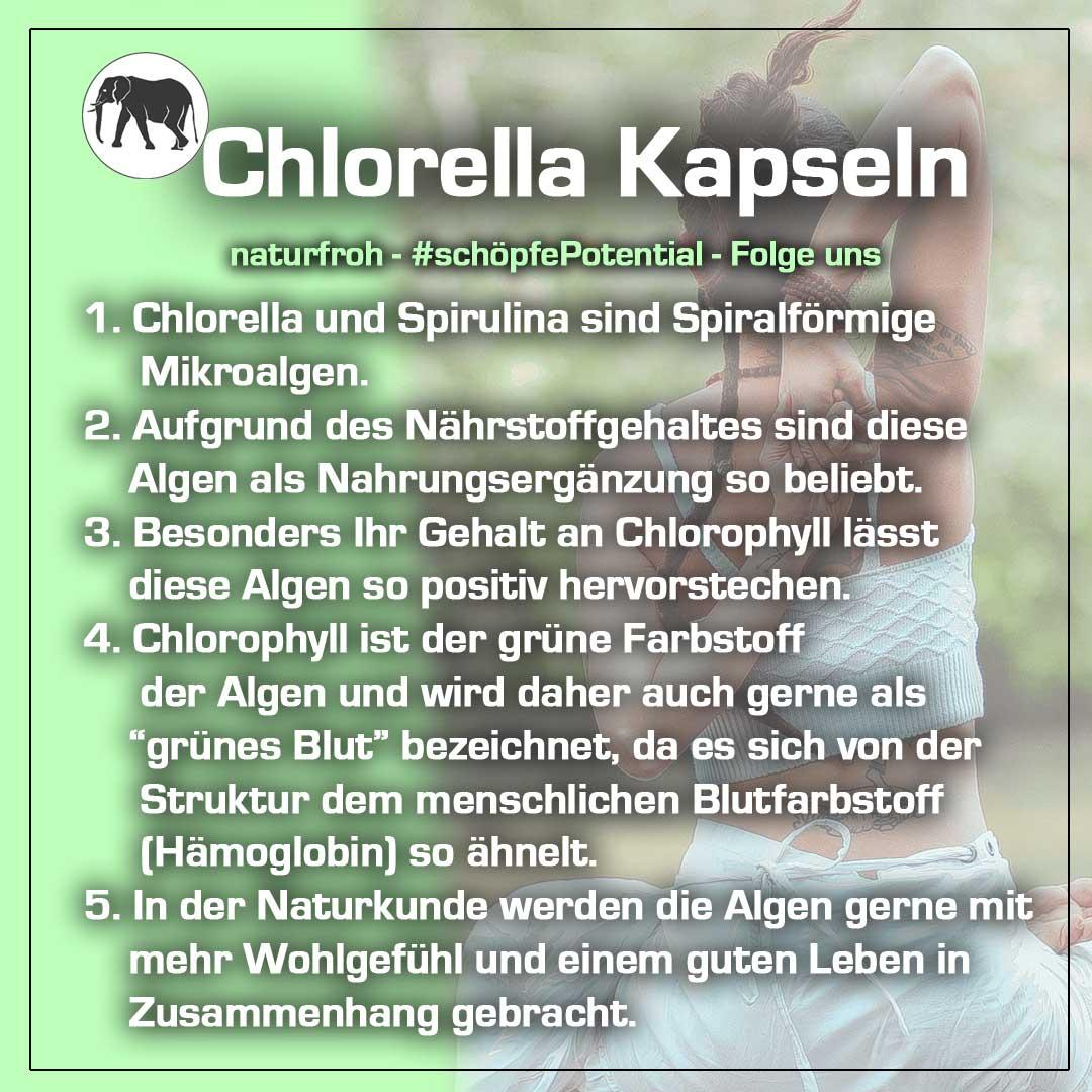 Chlorella Kapseln