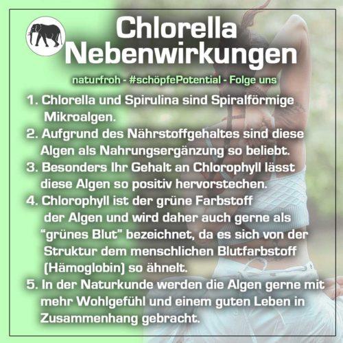 Chlorella Nebenwirkungen