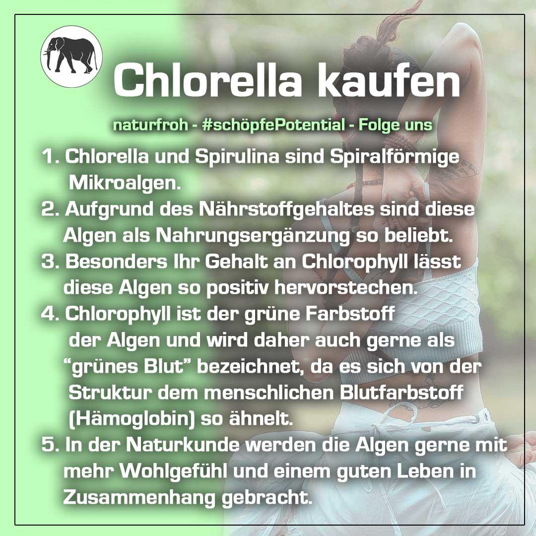 Chlorella kaufen