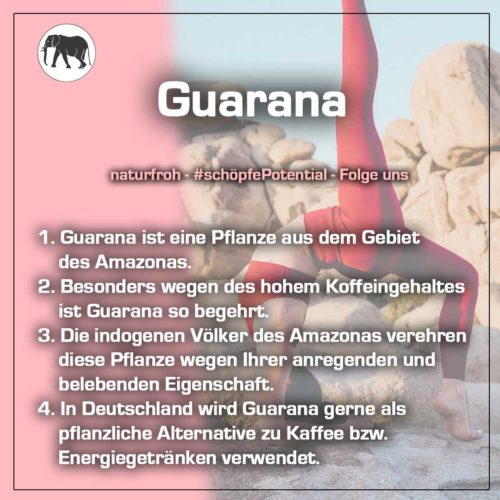 Guarana-Kapseln-1