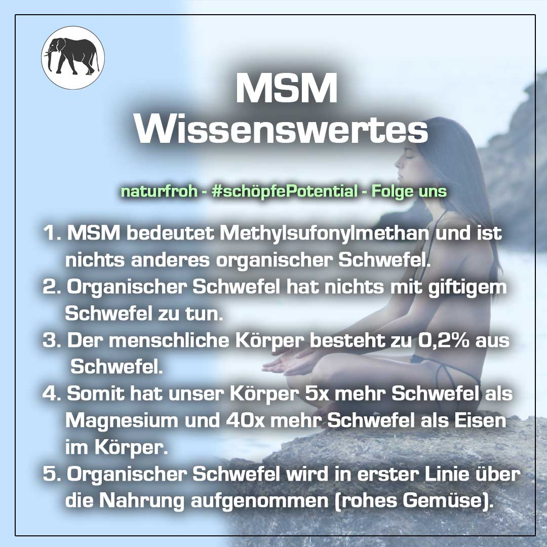MSM Haarausfall