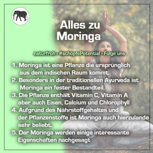 Moringa kaufen
