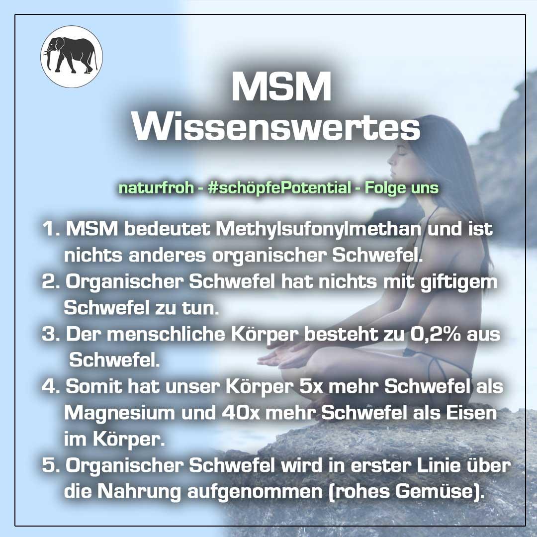 Nebenwirkungen MSM