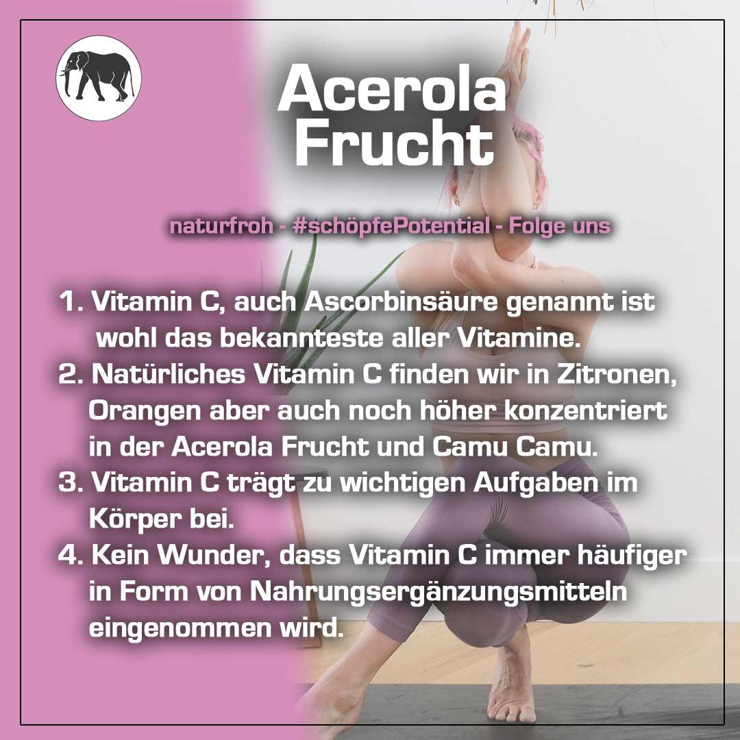 Acerola Frucht