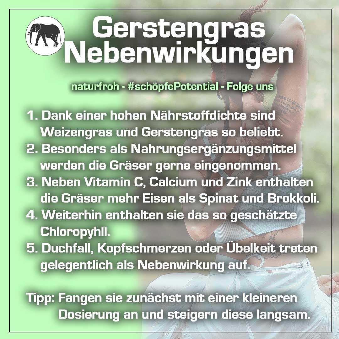 Gerstengras Nebenwirkungen
