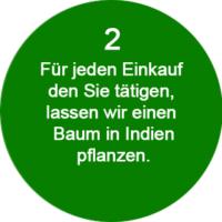 2-Kurkuma